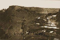 Cadiz:Vista de las excavaciones en la necrópolis dando frente a la muralla (1925)