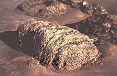 Cadiz:Restos del acueducto de Gades